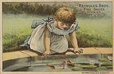 Young Girl Looking at Fish in Pond