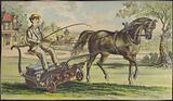 Boy driving a horse-drawn lawn mower