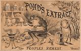 Frogs preparing medicines, advertisement for Pond's Extract