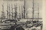 Sailing ships and Tilikum, Durban, South Africa