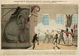 Destruction of the Noble Elephant at Mr Cross's Exeter Exchange, 1 March 1826
