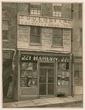 Hamlyn's Zoological Trading, 221 St George's Street, London Docks