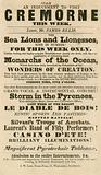 Advert for the appearance of Sea Lions and Lionesses at Cremorne Gardens, London in 1848