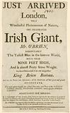 Advert for an appearance of Charles Byrne, aka O'Brien the Irish Giant, the tallest man in the known world