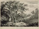 Thorn trees in Bushy Park, Middlesex