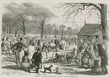Skating in Hyde Park, London