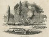 The Thames Regatta