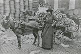 A woman flower seller