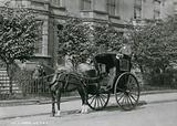A driver sitting on his Hansom cab
