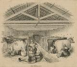 Laycock's Dairy Farm, dated July 1841