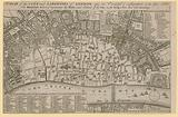 Plan of the City and Liberties of London after the dreadful conflagration in the year 1666