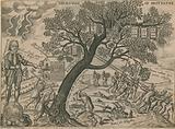 The royal oak of Britain