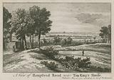 A view of Hampstead Road near Tom King's House