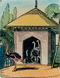 Ostrich and emu house at the London zoo. 1840s
