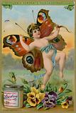 Butterfly Cherub with Pansies