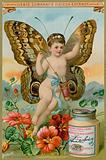 Butterfly Cherub with Red Flowers