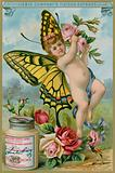 Butterfly Cherub with Red Roses