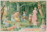 Sylphs and Woodland Animals