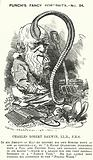 Punch cartoon: Charles Darwin, English naturalist and biologist