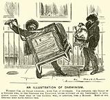 An Illustration of Darwinism