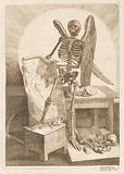 A Winged Skeleton Holding an Anatomical Drawing