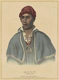 Qua-Ta-Wa-Pea, A Shawnoe Chief
