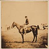 Captain Morgan, Rifle Corps, ADC. to General Bernard, on Coxcomb the winner of the Crimean races …
