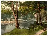 Horseshoe Falls, Berwyn Valley, Llangollen, Wales
