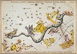Noctua, Corvus, Crater, Sextans Urani√¶, Hydra, Felis, Lupus, Centaurus, Antlia Pneumatica …