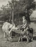 The dairymaid. Date c1884 Nov