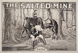 The Salted mine (Carson)