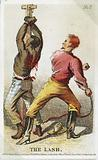 The Lash. Card showing bound African American slave being whipped