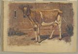 Study of a Standing Cow, Farmington