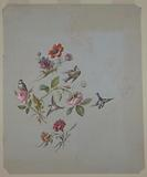 Design for Wallpaper and Textiles: Flowers and Birds