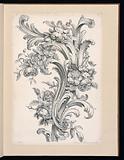 Floral and Acanthus Leaf Design