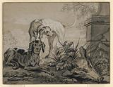 After the Hunt: Two Hounds beside a Boar's Head