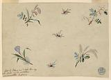 """Design for the Embroidery of Wearing Apparel of the """"Fabrique de St Ruf"""""""