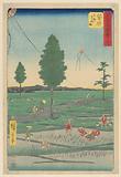 Fukuroi: Famous Totomi Kites (Fukuroi, meibutsu Ensu tako) from the series 53 Stations of Tokaido