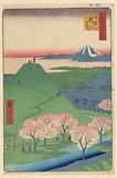 New Fuji, Meguro (meguro, Shin-Fuji) From the Series One Hundred Famous views of Edo