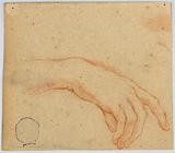 Sketch of a Right Hand