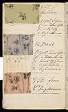 Pigment. Colours, 1883 & 4.