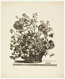 Basket with Flowers on a Table, from the series Livres de plusieurs paniers de fleurs (Flowers in a Basket)