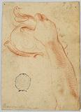 Study of the Right Forearm of a Woman, Holding an Antique Helmet