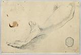 Sketch: Forearm