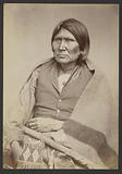 Comanche Chief Horseback [Tuh-huh-yet, Nau-qua-hip, Champion Rider]