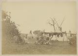 Drying Buffalo Meat [Arapaho Village]