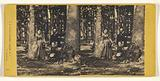 Three unidentified people in a forest setting: woman and man standing, another woman seated near a tree