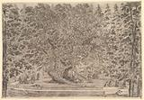 A large inhabited tree in center with ramps leading around the trunk, below a stone parapet on which people are …