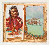 Chief Joseph, Nez Perces, from the American Indian Chiefs series for Allen & Ginter Cigarettes