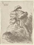 Old Bearded Man Facing Left